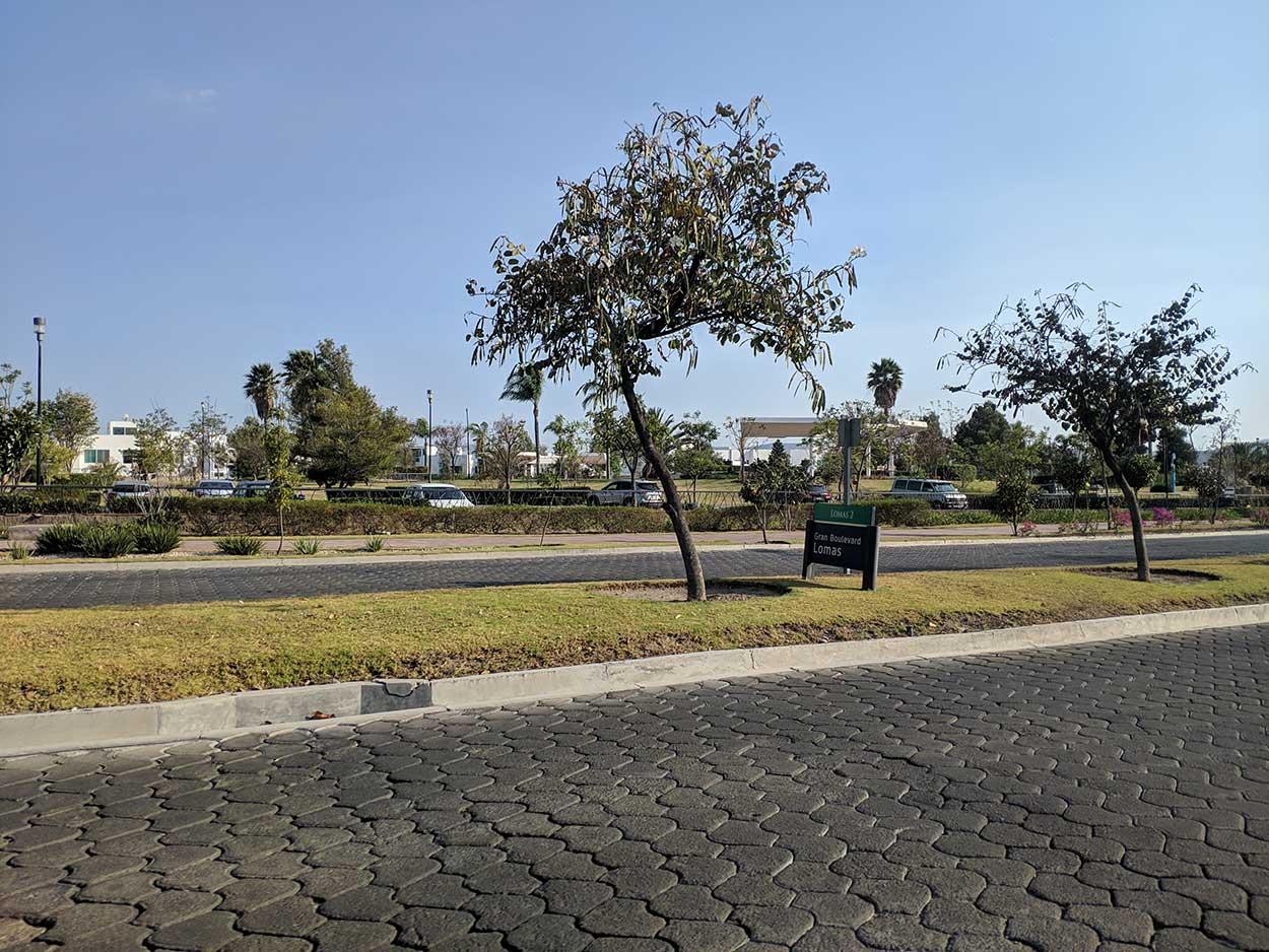 Boulevard Lomas